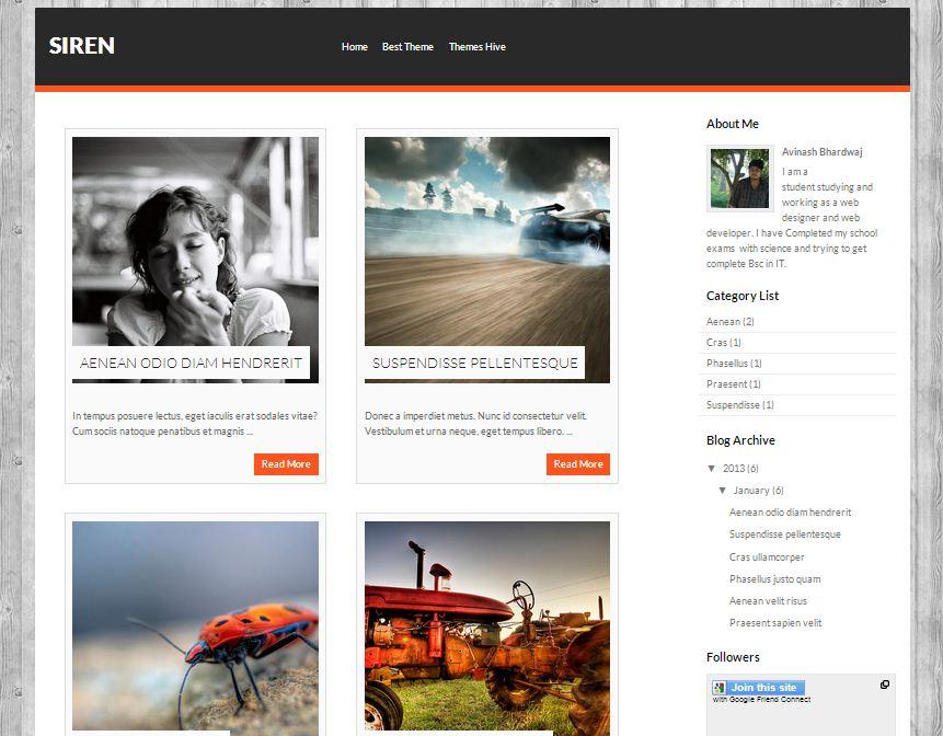 siren-blogger-template